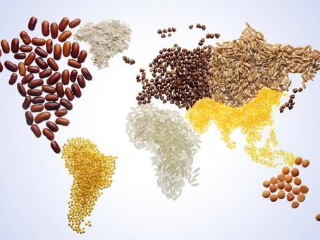 Casal vende marmitas com comida do mundo para montar sua kombihome