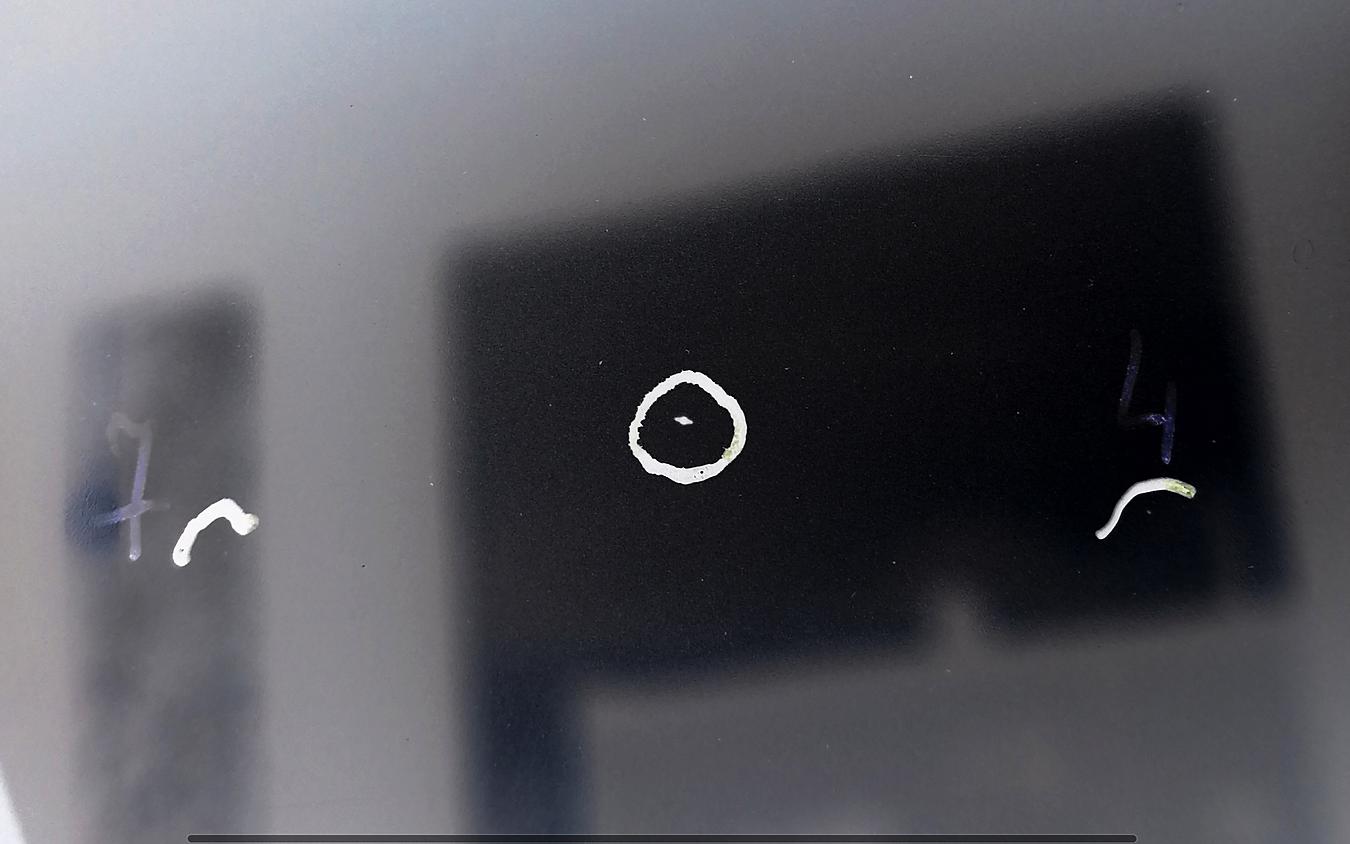 Zrzut ekranu 2018-12-02 o 22.40.14.png