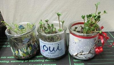 repurposed-5-oz-glass-oui-yogurt-jar_edi