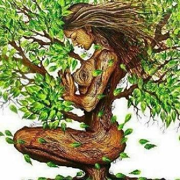 ecofeminism.png