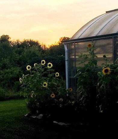 Campus Garden Green House