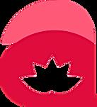 logo_123.png