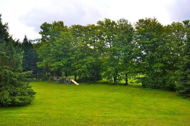 Cwood-yard