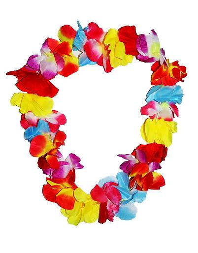 Hawaiian-Hula-Flower-Lei-Necklace.jpg