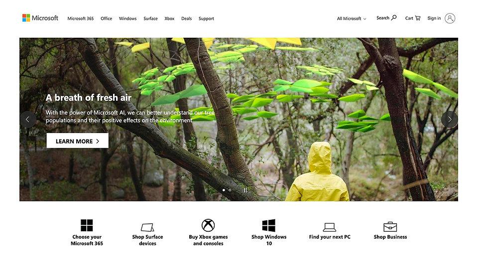 MS_Homepage.jpg