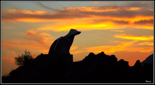 "Monumento al ""Gos de Tura"""