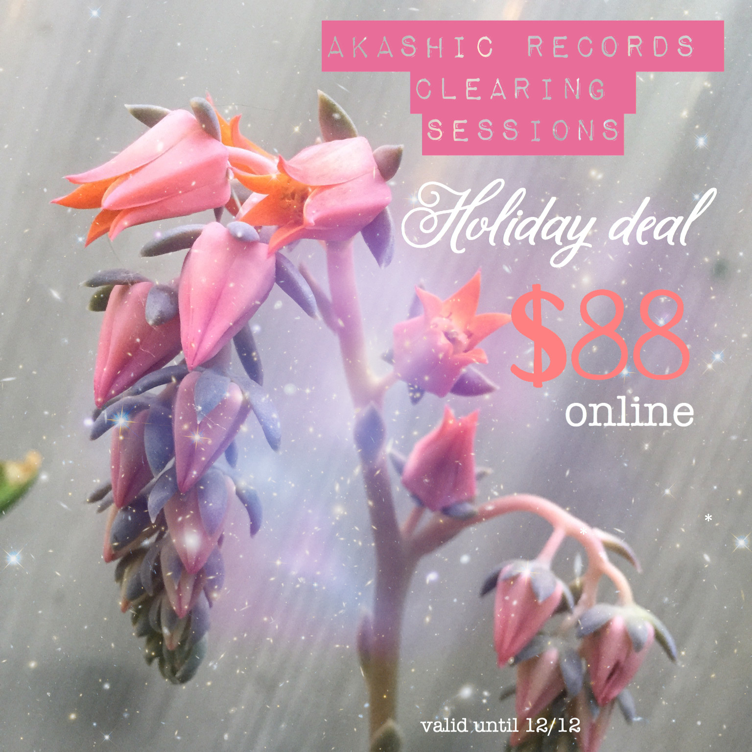 Akashic Records Session ~ Holiday Deal
