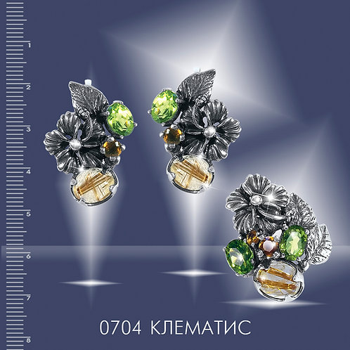 0704 КЛЕМАТИС