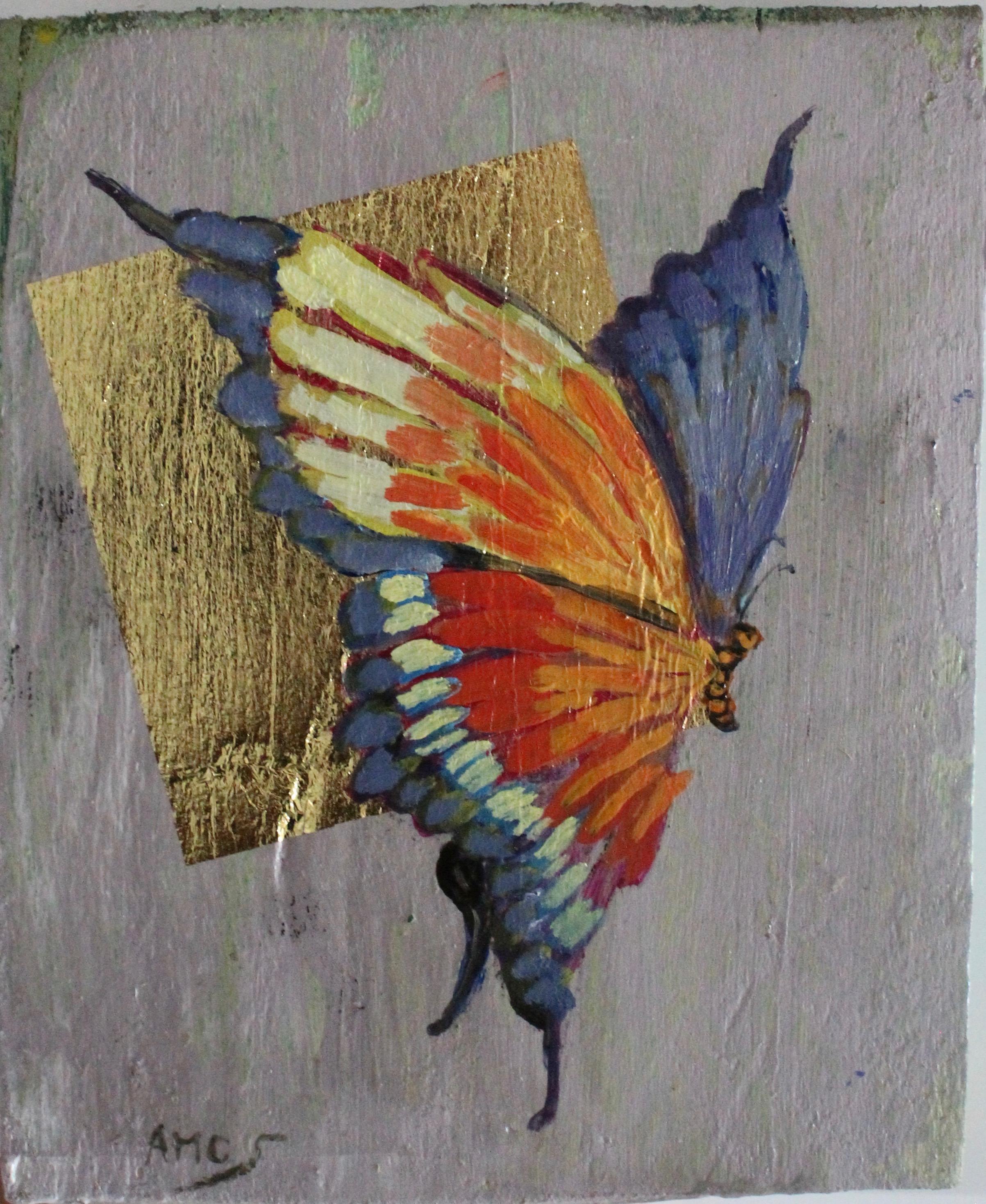Farfalla.Collezione Privata