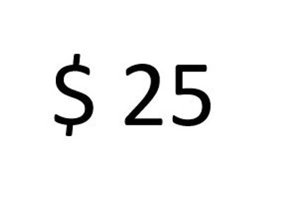 $25 payment
