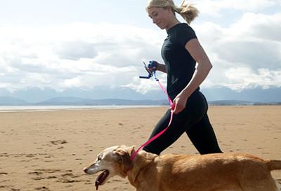 dog running at the beach.jpg
