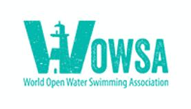 Wowsa-Logo-1.png