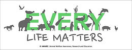 [다양한 비건라이프]  동물의 사회적 지위와 복지기준을 향상시키는 어웨어(AWARE)