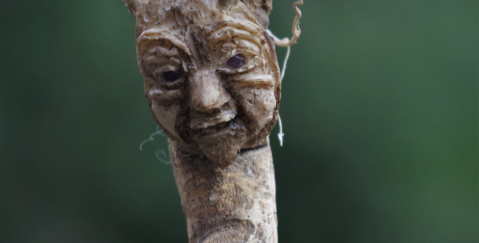 Twiglet Talking Stick/Tree Spirit - SOLD