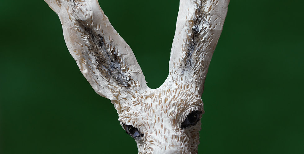 White Hare - SOLD
