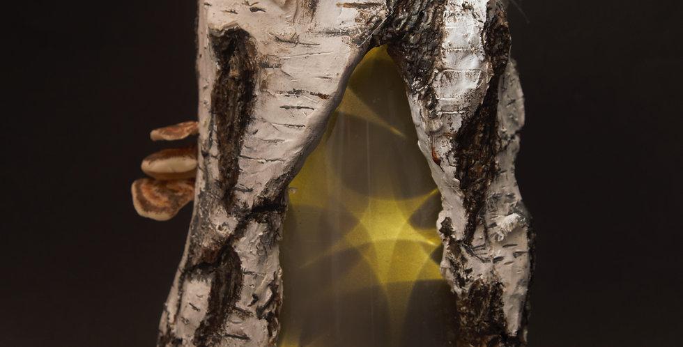 Inner Spirit - Enchanted Silver Birch Lamp