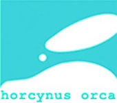 horcynus orca, messina, horcynus, capo peloro