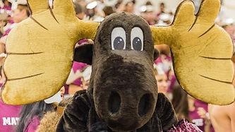 Mathey's Moosey Mascot who's always all ears!