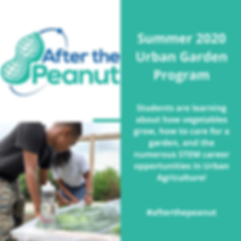 2020 Urban Garden program.png