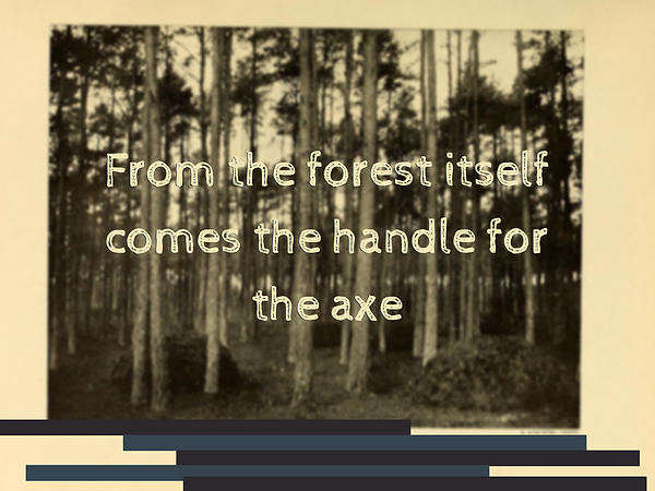 From the forest itself comes the handle