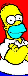 Homer1-long.png