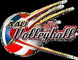 Galaxy Sports Volleyball