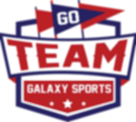 Logo Team Galaxy
