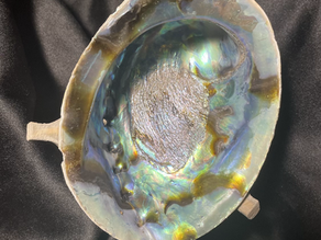 The Beauty of Abalone Shell