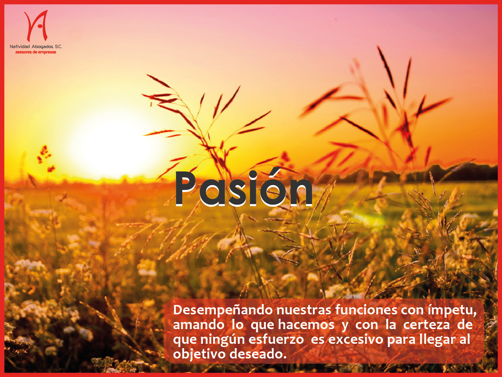 Pasion-01