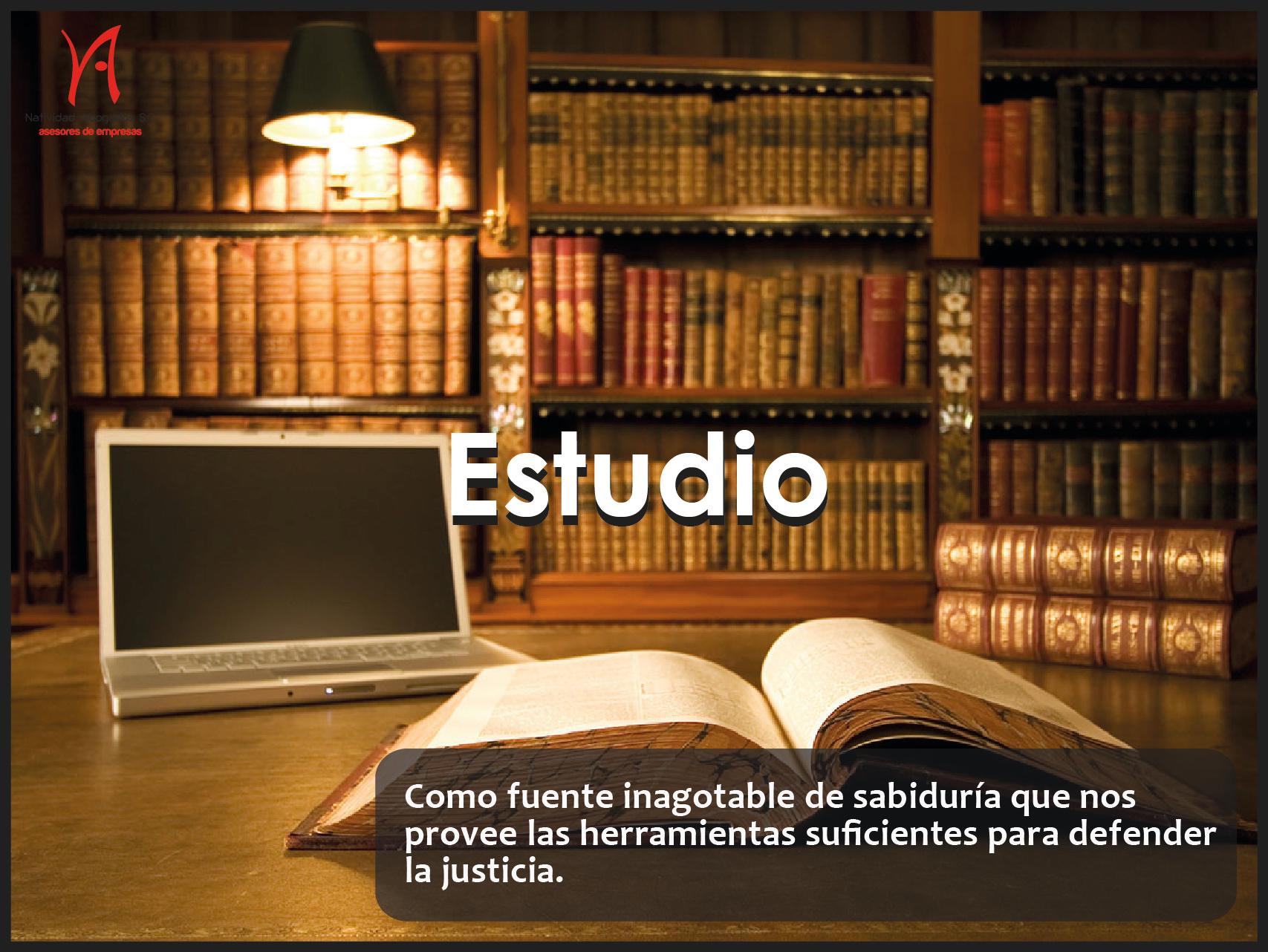 Estudio-01