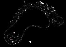 SFA-Logo-Transparent-Rotate-35-800x572.p