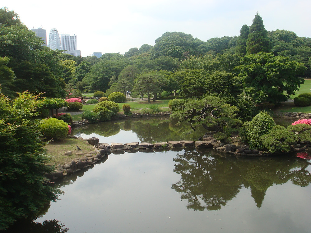 Japanese Gardens at Shinjuku.JPG
