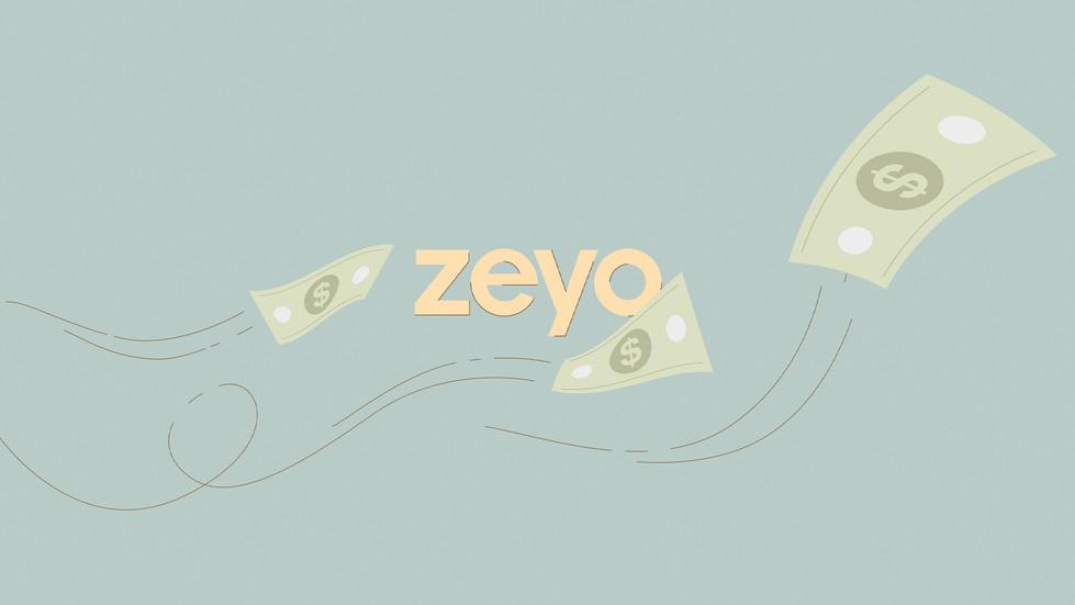 zeyo14.jpg