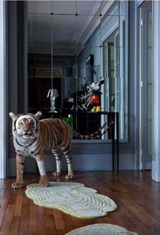 acc de chasse tigre.jpg