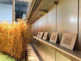 Exhibition view   Photo Joaquin Garbi