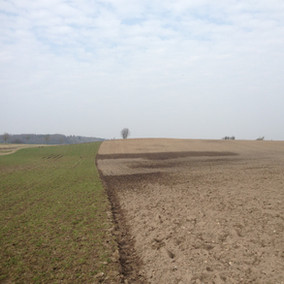 Soil moisture analysis, ground level | Østagergård