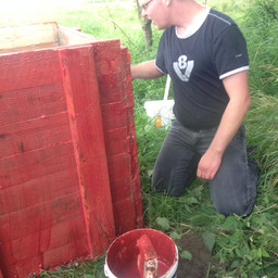Organic paint experiment