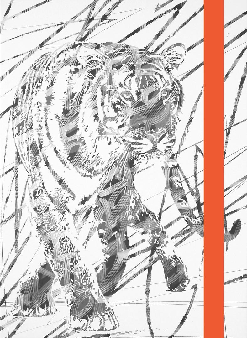 tiger 100x73cm 2016.jpg