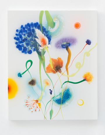 Psychotropical Oris, 110 x 90 cm, 2017