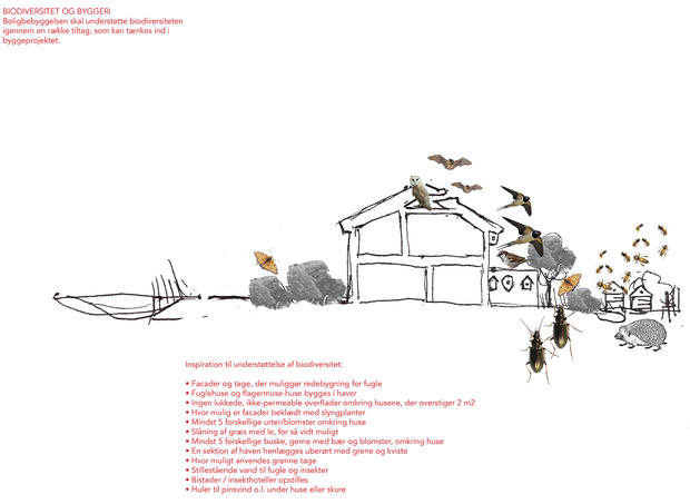 Construction and biodiversity | Photomontage by Rural Agentur