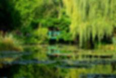 Lilly_Pond,_Monet_s_Garden.JPG