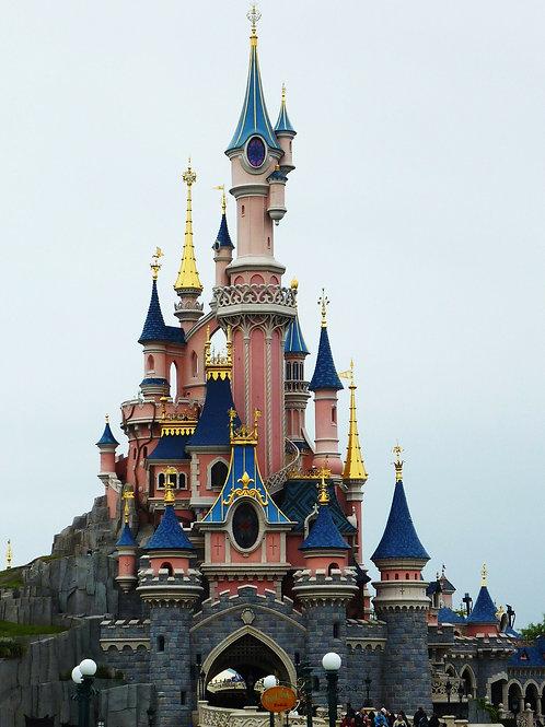 Billet Disneyland Paris (Promo jusqu'au 3/9/2020)