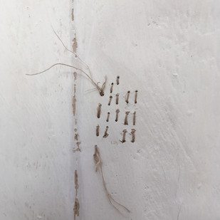 Detail from Life Lines 2 - web.jpg