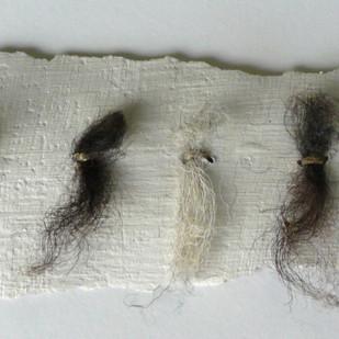 Wool Gesso 1.jpg
