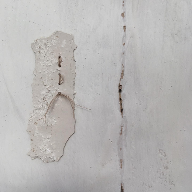 Detail from 'Life Lines', 2019