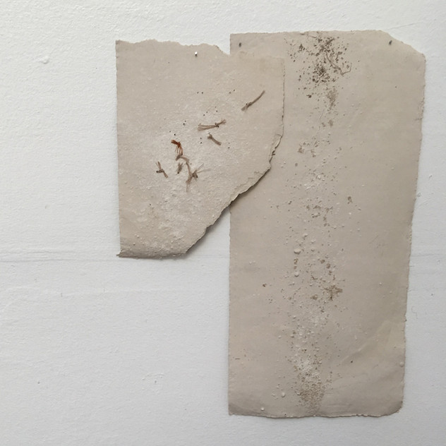 Fragments of Home, 2019