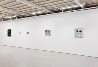 Installation View, Cloth and Feather at Birch Contemporary, 2021
