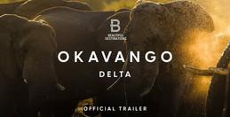 Delta rieky Okavango- Nebo na Zemi