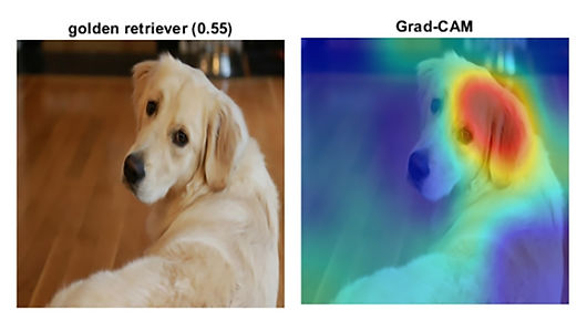 Debuging visualization.jpg