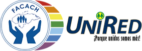 logo-UNIRED.png